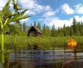 Тофалария расположена на западе Иркутской области. Это место проживания одной из самых малочисленных этнических групп — тофов Фото: Борис Слепнев