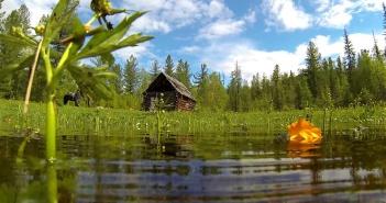 Тофалария, Иркутской области, Фото