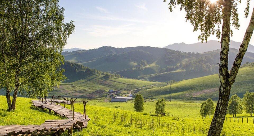 Алтайский район, село Никольское, фото