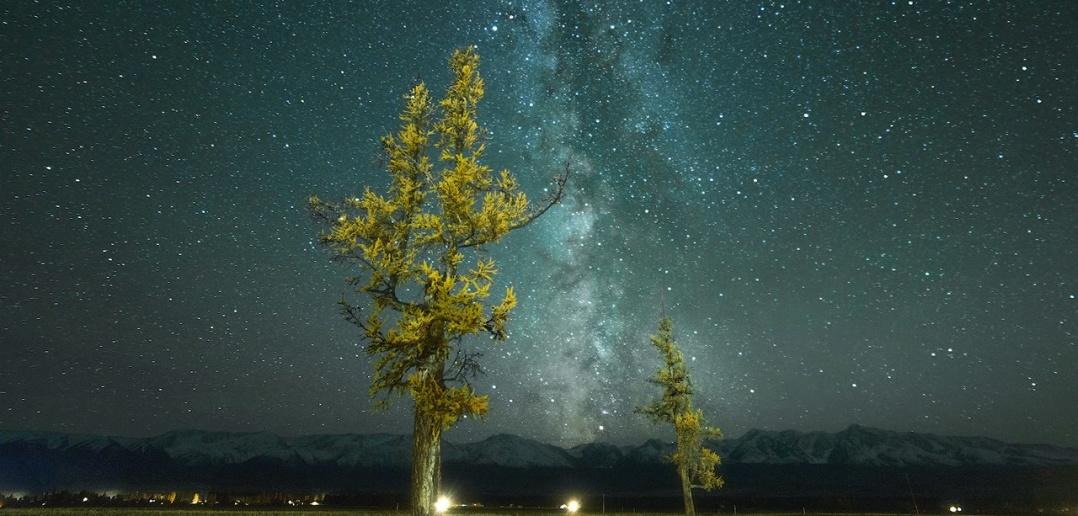 Курайской степи, Алтай, Фото