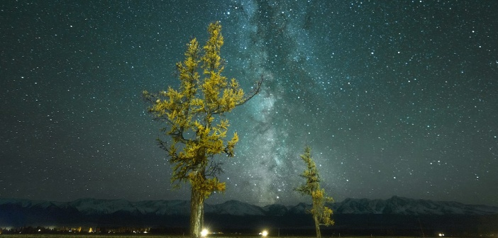Ночь в Курайской степи, Алтай Фото: Дмитрий Багинский