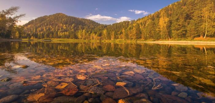 Река Бия   фото: Дмитрий Дудукин