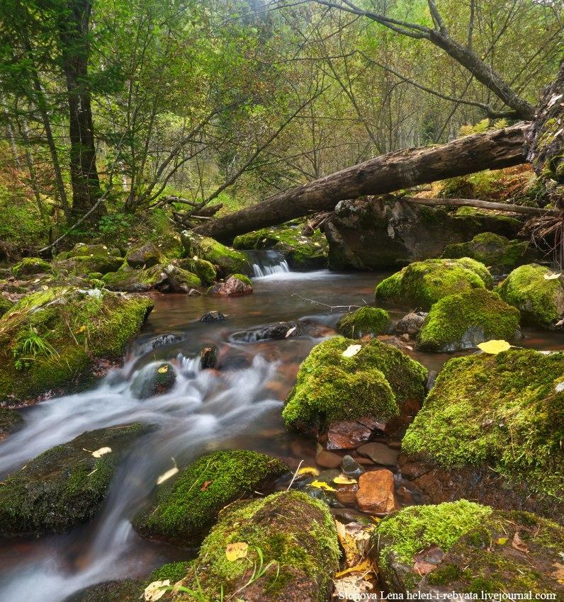 Река Лиственная, Мининские столбы, Красноярский край, Фото