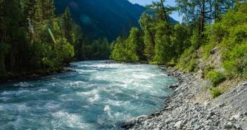Река Кучерла, июнь. Горный Алтай, Усть-коксинский район.   фото: Оля Алтая