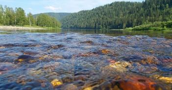 река Томь, фото
