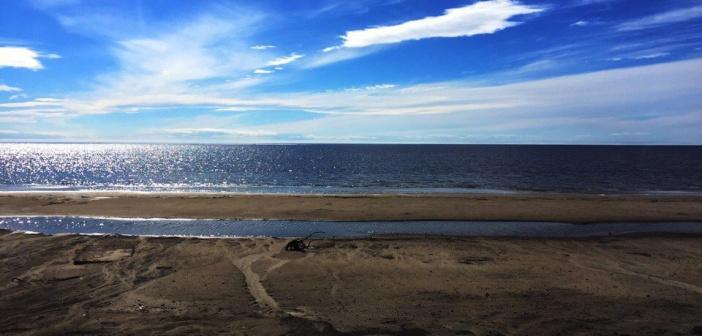Север. Ямал. Выход на ледовитый океан.   фото: Андрей К