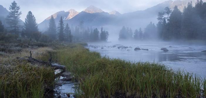 На берегу реки Мульта ранним туманным утром, Алтай Фото: Дмитрий Феоктистов