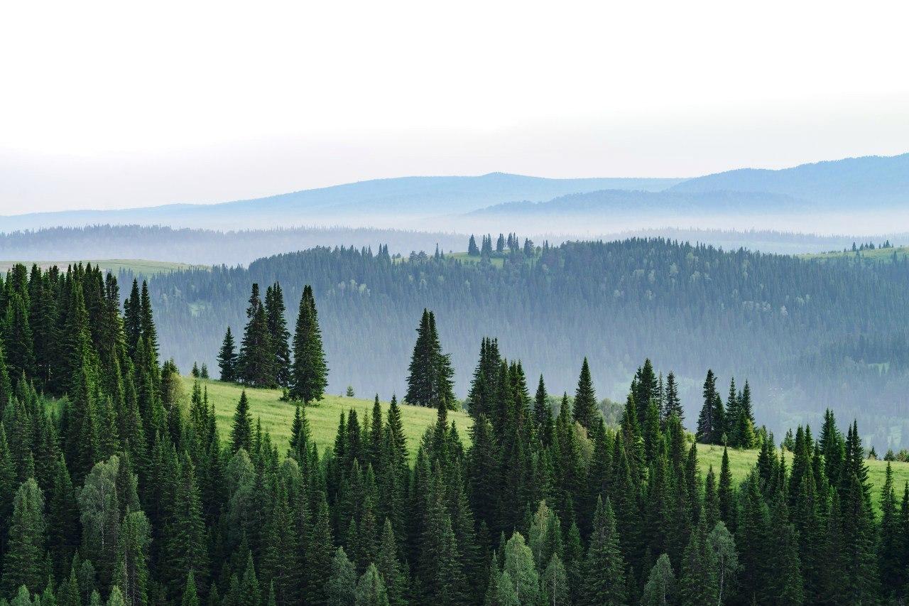 Кемеровская область, Таштагол, Фото