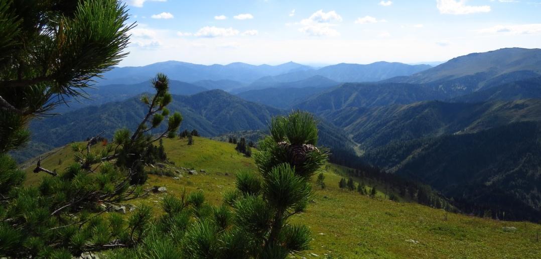 Риддер, Рудный Алтай, фото