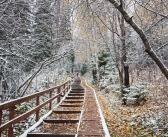 Первый снег на Красноярских Столбах   фото: Марк Базуев