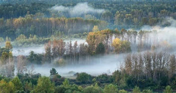 Бия, Алтайский край, Фото