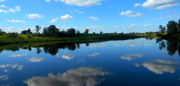 Пруд у села Бураново, Новосибирская область.   фото: Олеся Усачева