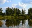 Омская область, Называевский район, фото