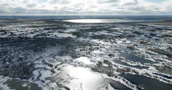 Васюганские болота, Западная Сибирь, Фото