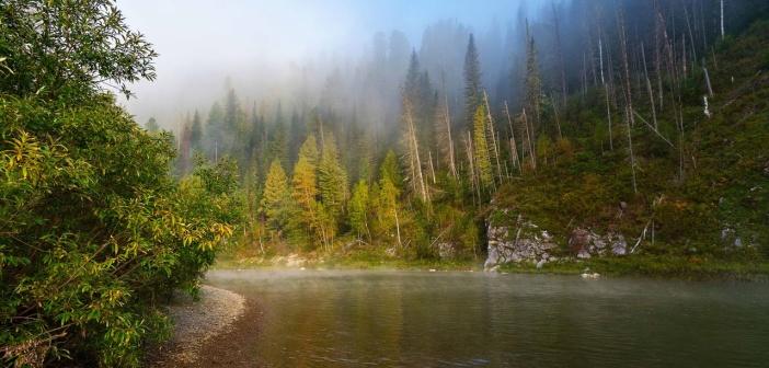 Туманное утро на реке  Шорский национальный парк. Река Мрас Су. Кемеровская область Фото: Николай Швалюк