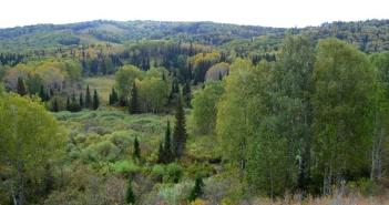 Колывань, Алтайский край, фото