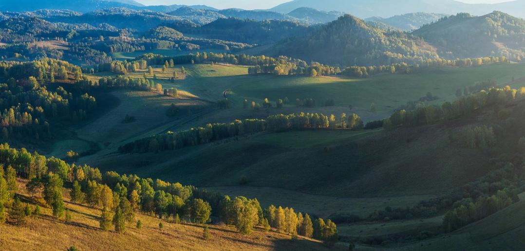 Чарыш, алтайский край, Фото