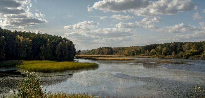 Река Орда. Новосибирская область.   фото: Антон Семенов