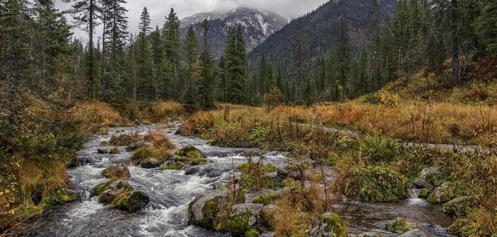 Осень на Хамар-Дабане.  Река Большой Мамай, Республика Бурятия.  Фото: Кирилл Буртасовский