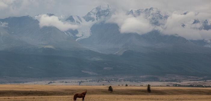 Вид на ледник Актру, Республика Алтай  Автор фото: Вячеслав Бахтин