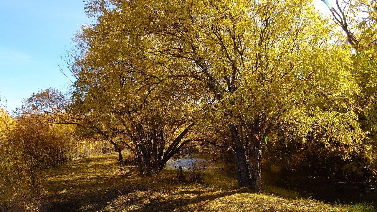 Река Анга, Ольхонский район, Еланцы, фото