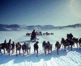 Родство северных народностей Сибири и эскимосов Северной Америки.