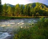Топ — 5 лучших мест для отдыха на Алтае