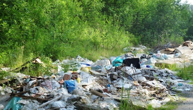 Типичная незаконная свалка отходов