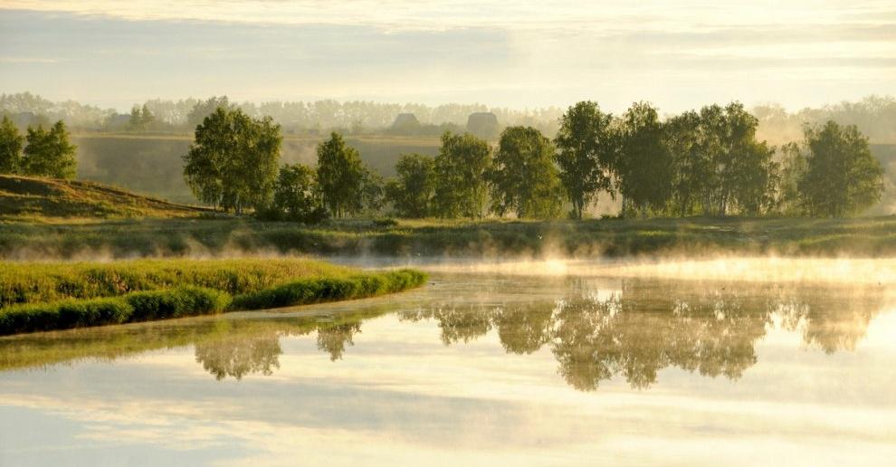 Туманное утро. Омская область.