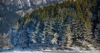 Зимой видно, как дышит природа..