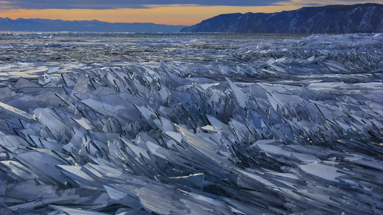Колючая нежность. Озеро Байкал.